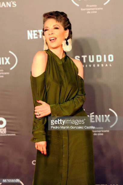 Edith Gonzalez poses during Fenix Iberoamerican Film Awards 2017 at Teatro de La Ciudad on December 06 2017 in Mexico City Mexico