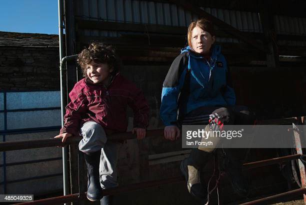 Edith Owen and her sister Raven sit on a fence waiting for a delivery of sheep at Ravenseat the farm of the Yorkshire Shepherdess Amanda Owen on...