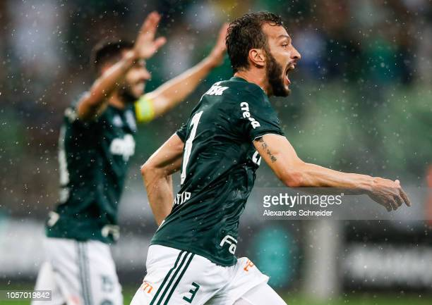 Edu Dracena of Palmeiras celebrates after scoring the second goal of his team during the match against Santos for the Brasileirao Series A 2018 at...