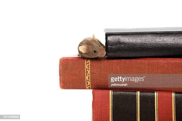 Educated Mouse
