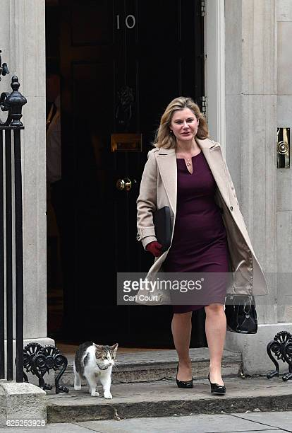 Education Secretary Justine Greening walks past Larry the Downing Street cat as she leaves after attending a Cabinet meeting at 10 Downing Street on...