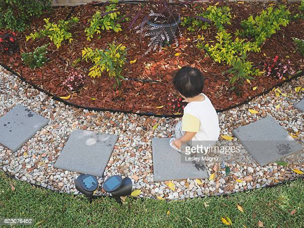 education - toddler is learning about the flowers at their garden - mulch stock pictures, royalty-free photos & images