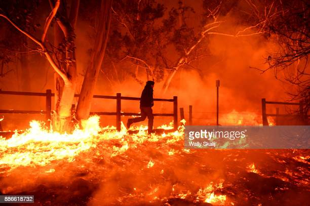 Edward Aguilar runs throught he flames from the Thomas Fire to save his cats at his mobile home along Highway 33 in Casita Springs in Ventura County...