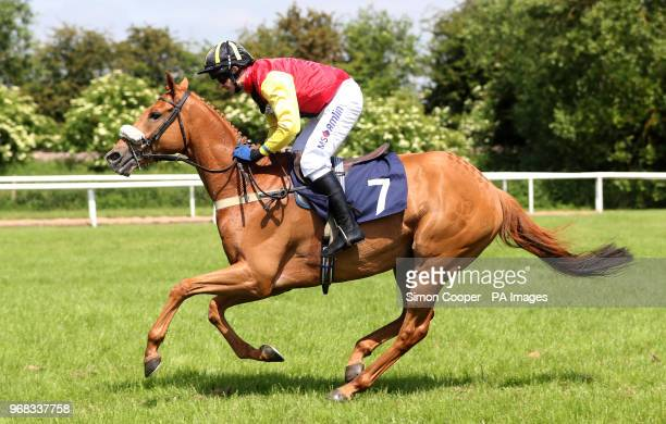 Edward Elgar ridden by Andrew Thornton in action during The Andrew Thornton Congratulations On Your Retirement Handicap Hurdle at Uttoxeter Racecourse