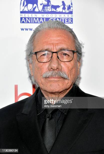 Edward James Olmos attends the 2019 Hollywood Beauty Awards at Avalon Hollywood on February 17, 2019 in Los Angeles, California.