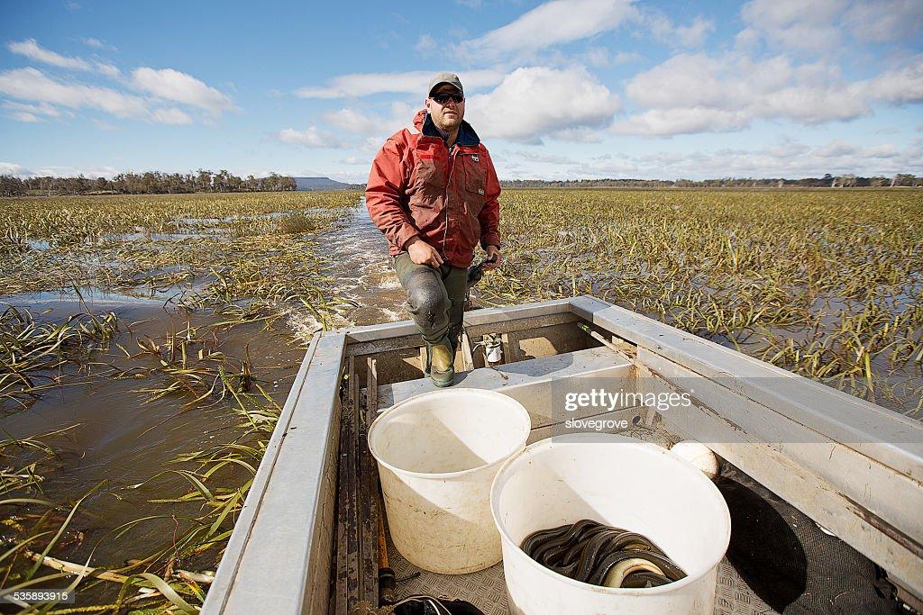 Eel Fisherman : Stockfoto