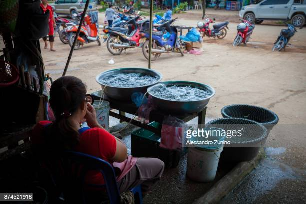 eels seller. - laotian culture stock pictures, royalty-free photos & images