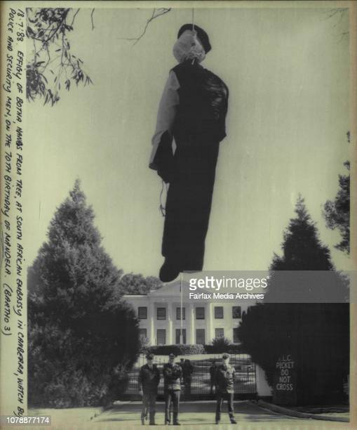Effigy of both a hangs from tree at South African Embassy in Canberra watch by police and security men on the 70th birthday of Mandela July 18 1988