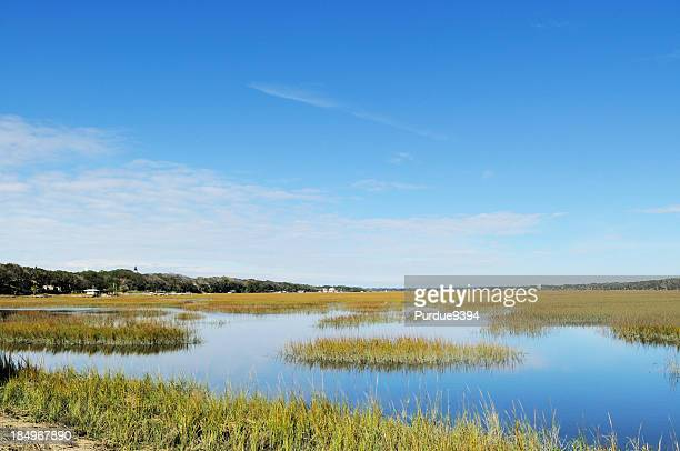 Egan Creek Greenway Marsh and Amelia Island Lighthouse Florida