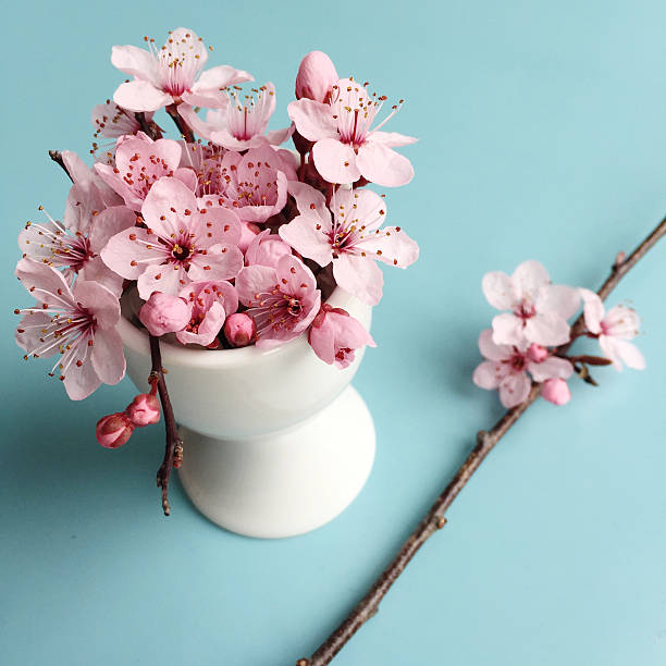 Egg Cup filled with pink Blossom