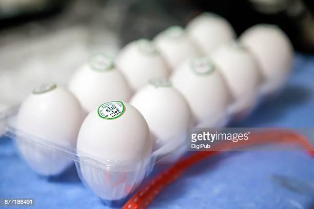 Egg Day!