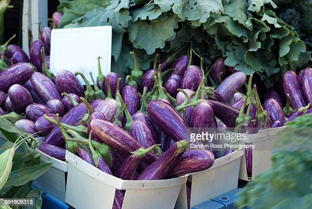 egg plants at the market - carolyn ross stock pictures, royalty-free photos & images