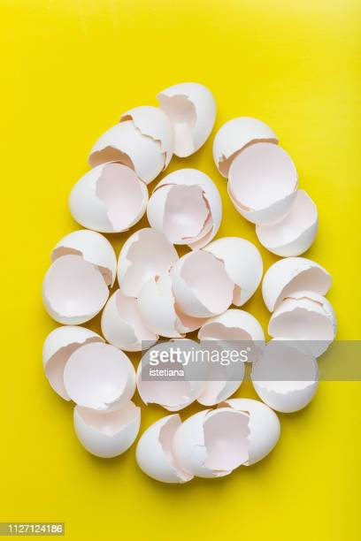 egg shape with broken white eggs, new life fragility, chaotic arrangement - eggshell stock pictures, royalty-free photos & images