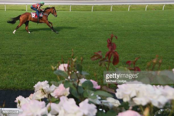 Egg Tart ridden by Kerrin McEvoy gallops during Breakfast With The Stars at Moonee Valley Racecourse on October 24 2017 in Melbourne Australia