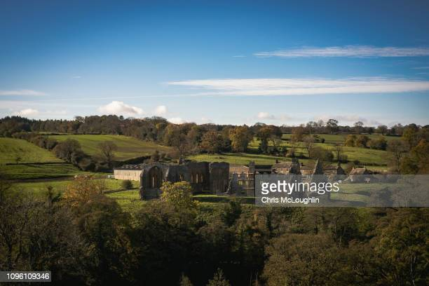 egglestone abbey - barnard castle stock pictures, royalty-free photos & images