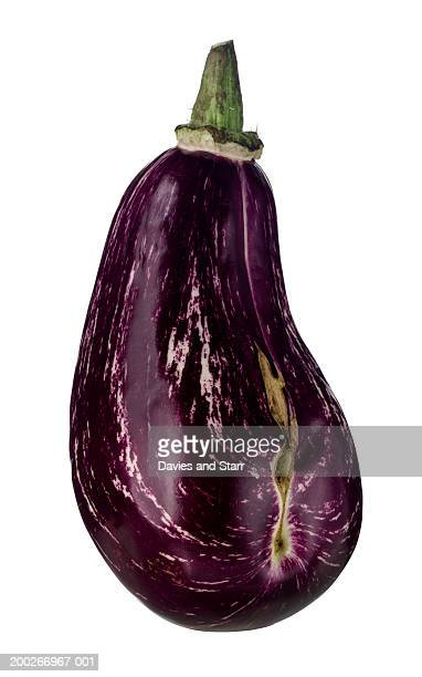 eggplant or aubergine - eggplant stock pictures, royalty-free photos & images