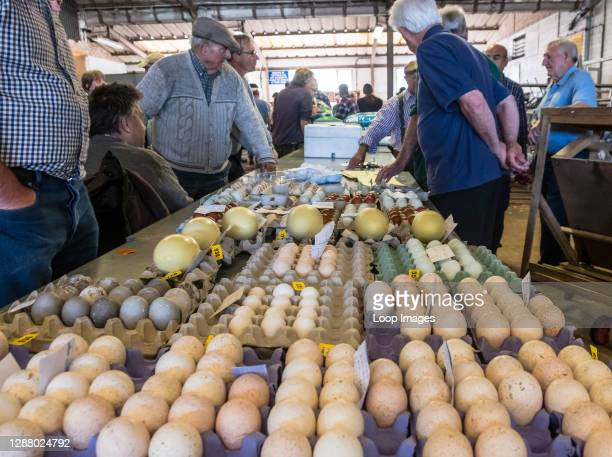 Eggs for sale at a livestock market including large Rhea eggs.