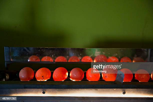 Eggs from Lohmann Brown chickens pass over an inspection light inside a barn at Meadow Haven Farm a certified organic family run farm in Sheffield...