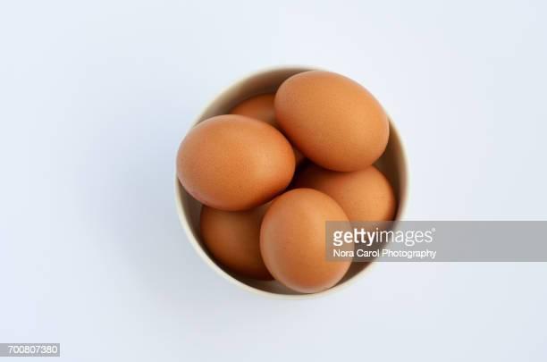 eggs in a bowl - huevo etapa de animal fotografías e imágenes de stock