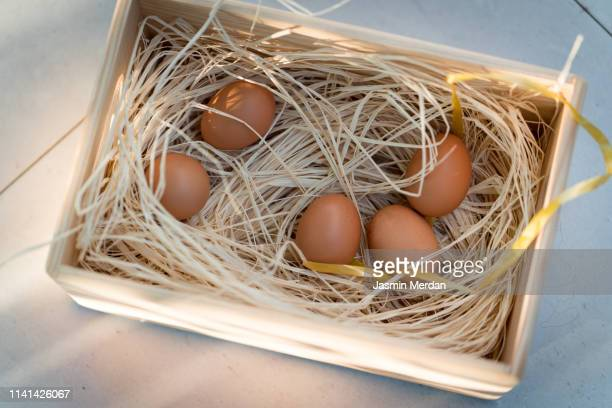eggs in basket nest - inbox filing tray stock pictures, royalty-free photos & images