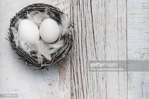 eggs in nest on white wooden background. easter. - kreativität stock pictures, royalty-free photos & images