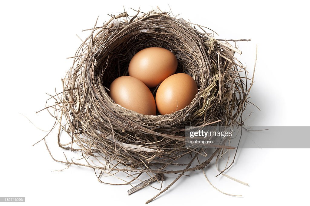 Eggs in the nest : Stock Photo