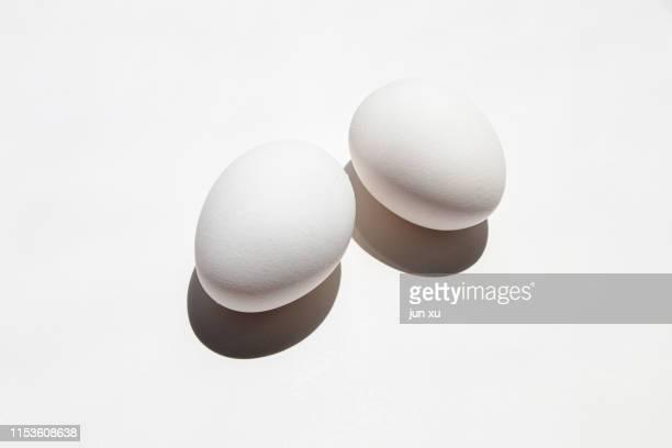 eggs on a white background - 動物の卵 ストックフォトと画像