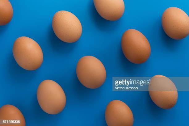 eggs - dozen stock pictures, royalty-free photos & images