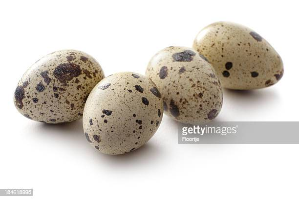 eggs: quail egg - quail bird stock photos and pictures