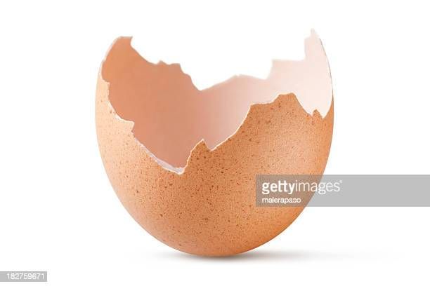 eggshell - animal egg stock pictures, royalty-free photos & images