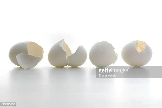 Eggshell Stilllife