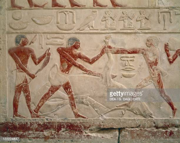 Egypt Ancient Memphis Necropolis of Saqqara Mastaba of Princess Idut Dynasty VI Relief with a scene of slaughter