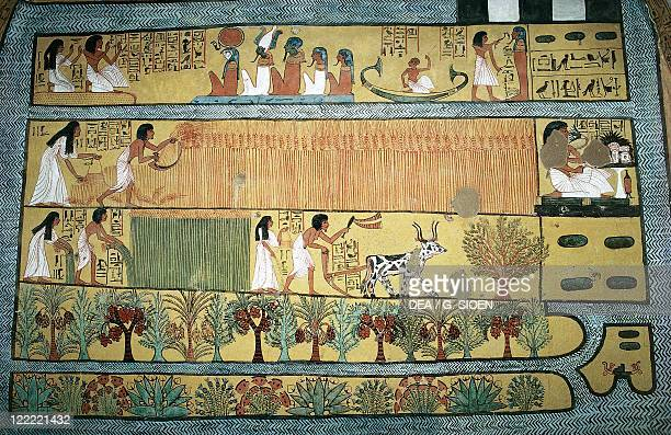 Egypt Ancient Thebes Village of state labourers at Dayr alMadinah Tomb of Sennedjem New Kingdom Dynasty XIX Fresco depicting agricultural scenes in...
