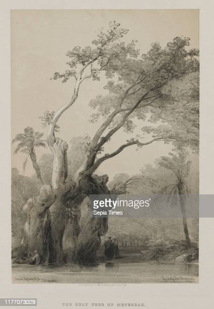 The Holy Tree of Metereah 1849 Louis Haghe FGMoon 20 Threadneedle Street London after David Roberts Color lithograph sheet 45 x 405 cm image 351 x...