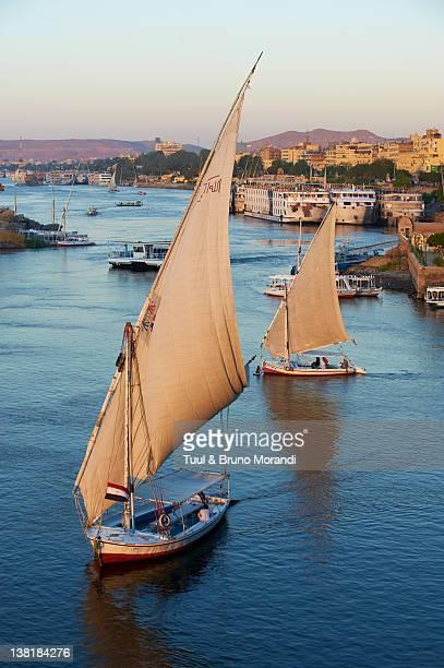 Egypt, Aswan, Feluccas on the Nile River