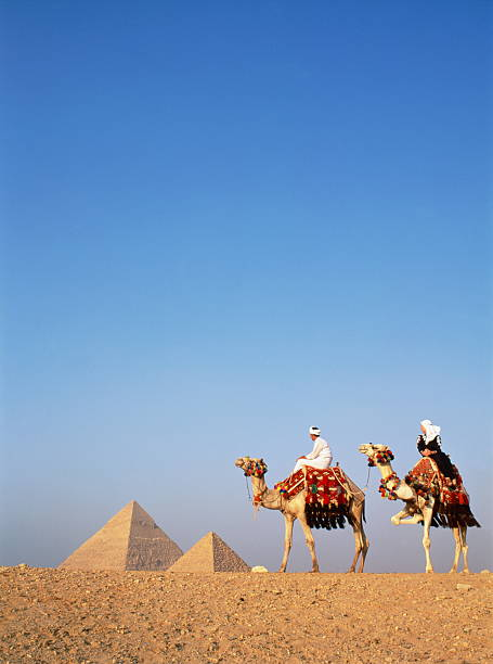 Egypt, Cairo, Giza, tourists on camels in front of Great Pyramids