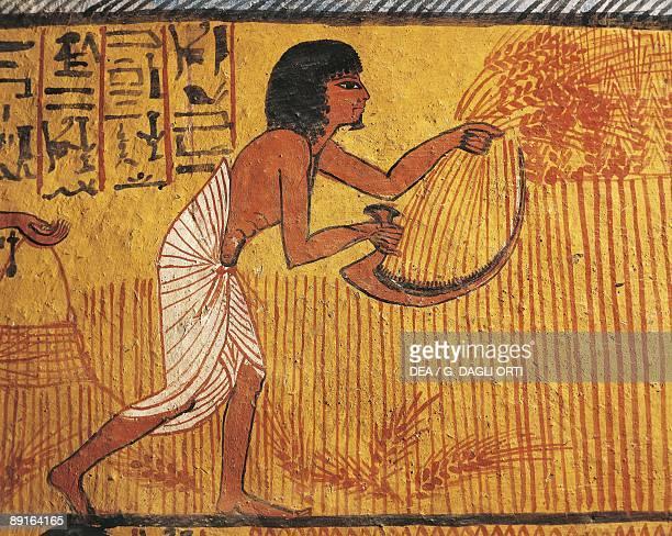 Egypt Dayr alMadinah Tomb of Sennedjem Mural painting of farmer from Tomb of Sennedjem
