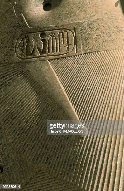 Detail of a pink granit colossus standing in the courtyard at the Temple of Luxor The traditional pagne the chendjit worn by the monarch shows very...