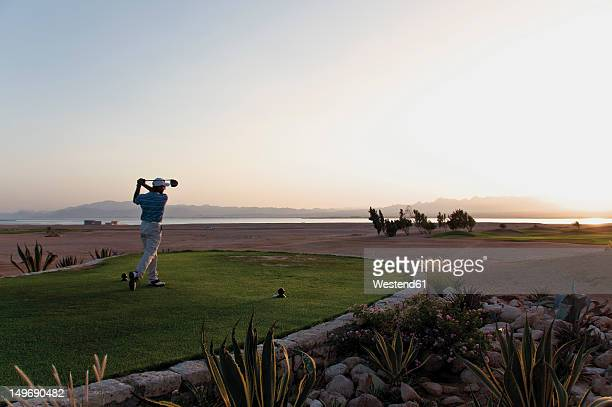 egypt, man playing golf on golf course - teeing off stock pictures, royalty-free photos & images