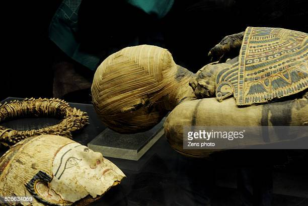 egypt mummy with mask - mummy - fotografias e filmes do acervo