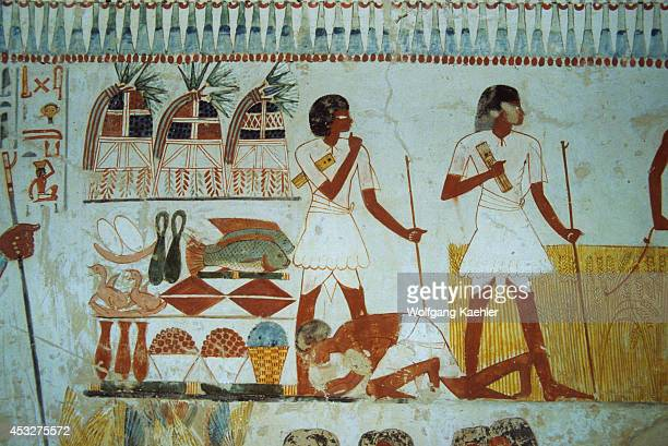 Egypt Near Luxor Colorful Frescoes On Interior Walls Of The Tomb Of Menna