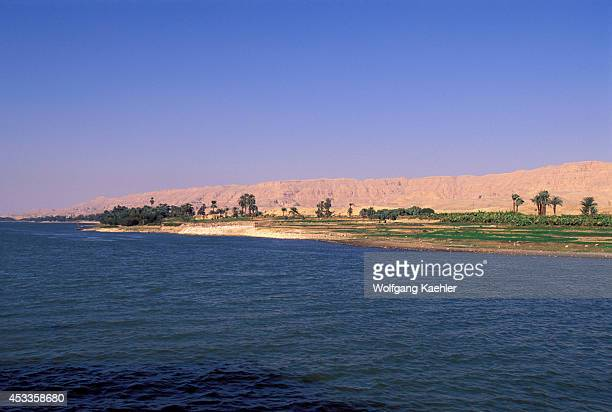 Egypt Nile River Between Esna And Luxor Date Palm Trees