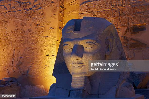 egypt, nile valley, luxor, the temple of luxor, statue of the pharaoh ramesses ii - rameses ii stock photos and pictures