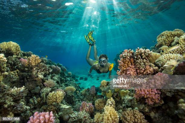 egypt, red sea, hurghada, teenage girl snorkeling at coral reef - reef stock pictures, royalty-free photos & images