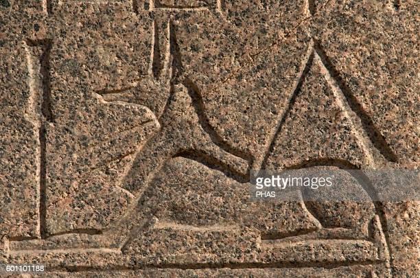 Egyptian Art God Anubis Relief Mit Rahina Open Air Museum Memphis Egypt