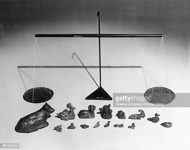 Egyptian cardpivot wooden beam balance and bronze animal weights