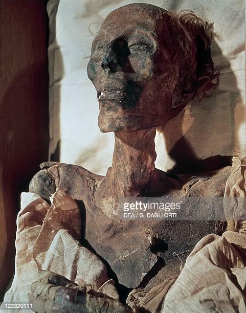 Egyptian civilization New Kingdom Dynasty XIX Mummy of Pharaoh Ramses II from Thebes