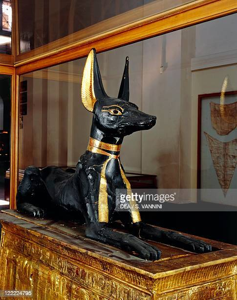 Egyptian civilization New Kingdom Dynasty XVIII Treasure of Tutankhamen Wooden statue of jackal god Anubis upon a gilded chest