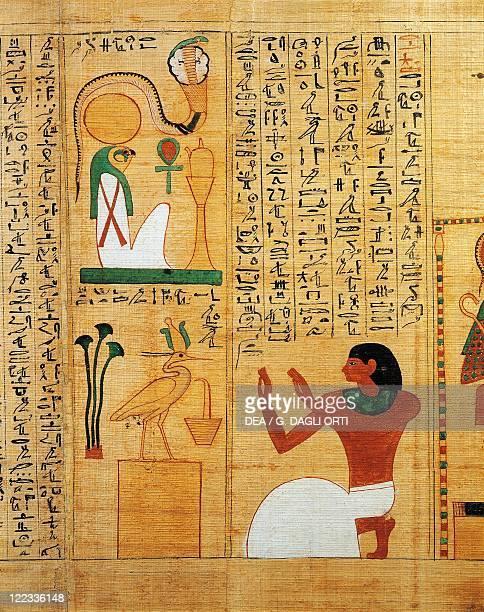 Egyptian civilization Third Intermediate Period Dynasty XXIXXII Mythological papyrus of Imenemsauf Chief bearer of Amon Detail hymn to the sun Ra as...