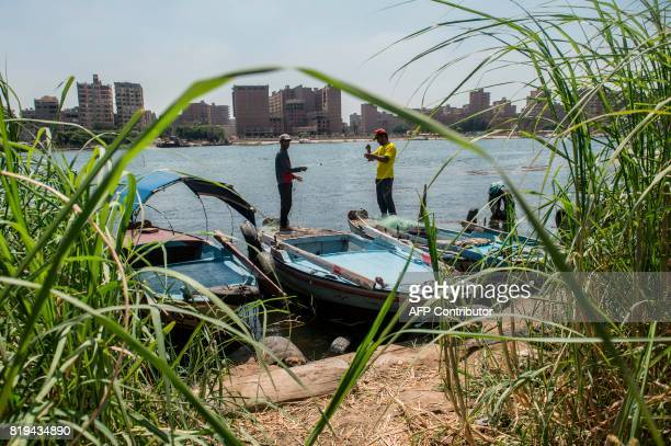 Egyptian fishermen pull their fishing net out of the Nile river in Cairo on July 20 2017 / AFP PHOTO / KHALED DESOUKI